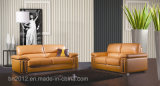 Special Classical Leather Sofa (S-2995)