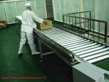 Special Type Stainless Steel Roller Conveyor