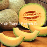 Cantaloupe Juice Powder /Melon Juice Powder /Melon Extract Powder /Hami Melon Powder/Cantaloupe Powder