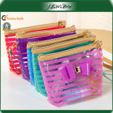 Fashion Popular Cute PVC Cosmetic Handbag Plastic Bag