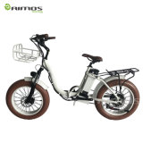 Hot Selling Cool Fat Tire Foldable Electric Bike for Rent Foreigners