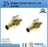 China Supplier Manufacture Fast Delivery Brass Ball Valve 1/2, 3/8