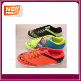 Fashion Classic Soccer Shoe for Sale