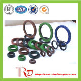Various Oil Seal-Tc NBR Oil Seal Manufacturer