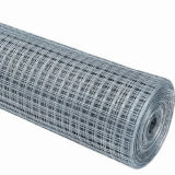 China Wholesale Welded Wire Mesh Roll for Construction (WWM)