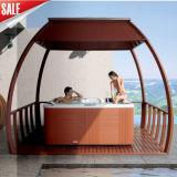 Monalisa Hot Sale LED Sexy Whirlpool SPA Hot Tub (M-3367)