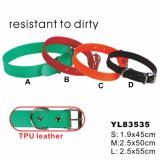 Candy Color Leather Dog Collar (YL83535)