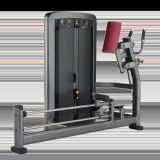 Commercial Fitness Equipment Glute (XH915)