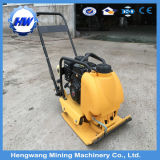 Low Price Hot Selling Reversible Plate Compactor
