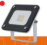 20W Apple LED Flood Light