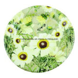Customized Logo Disposable Party Paper Plates with Color Printed