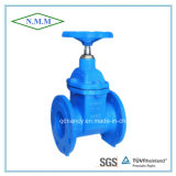BS5163 Cast Iron Rubber Wedge Non-Rising Stem Gate Valve