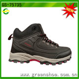 New Model Hot Selling Hiking Boot