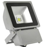 100W IP65 CE 3 Years Warranty LED Floodlight