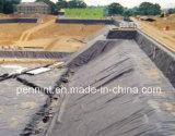 HDPE Pond Liner/LDPE Membrane Landfills Low Price Manufacturer 1.0mm-4.0mm