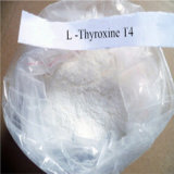 T4 Weight Loss Steroids Levothyroxine Sodium Without Side Effect 25416-65-3