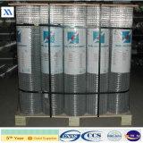Zinc Coated Welded Wire Mesh (XA-WM52)