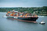 Fast Shipping to Bandar Abbas/Mersin/Doha/Tema/Apapa/Luanda From Ningbo/Guangzhou/Shenzhen/Xiamen, China