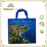 Attractive Printing Woven Polypropylene Sack Wholesale PP Woven Bags