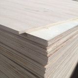 Poplar Core Plywood Wood for Pallet Packing Box (6X1220X2440mm)