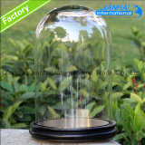 Clear Bell Jars Glass Domes Wholesale