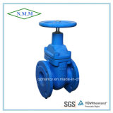 Cast Iron Non-Rising Stem Light Type Gate Valve