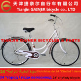 """Tianjin Gainer 24"""" Lady Bicycle Fashionable Design"""