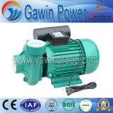 1HP dB Series Electric Clean Water Pump for Home and Agriculture