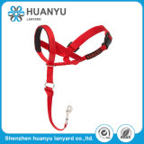 Durable Use Retractable Pet Leashes Dog Collars and Leads
