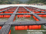 HDPE Pontoon Cubes Tilapia Fish Cage Floating in Africa