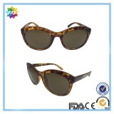 Newest Sports Series Fashion Sunglasses for Women