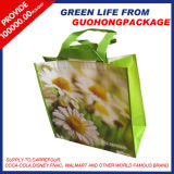 PP Non Woven Promotional Bag for Sell
