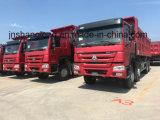 Sinotruk HOWO 8X4 Dump Truck Hot Sales Zz3317n4867A/Sowa-5