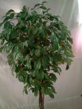 Artificial Plants and Flowers of Lemon Tree Gu51619808