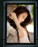Hanging LED Slim Crystal Display Acrylic Light Box (CSH01-A3P-01)