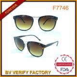 F7746 Tortoiseshell Custom Sunglass Smoke Lens Free Samples