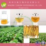 Forchlorfenuron (Forchlofenaron) (95%TC, 0.1SL)