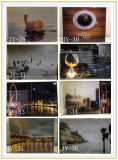 3+3mm Excellent Quality Decorative Art Glass with Different Designs