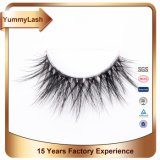 2017 New Natural Styles Down 3D Fake Eyelash Extension Supplies