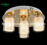 2013 Newest Mordern Ceiling Lighting with High Quality (C-9460/4)