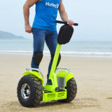 Portable Ecorider Two Wheel Self Balancing Electric Motor Scooters