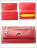 Fashion Lady PU Wallet/Purse/Bag (JYW1501)