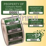 Destructible Tamper Evident Labels