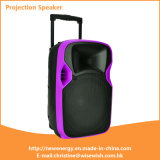 ODM 12 Inches Plastic Active Trolley MP3 Speaker with Battery