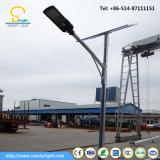 6m Pole 40W Solar Street Light with Competitive Price