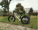 3 Wheel Electric Bicycle with Rear Cargo