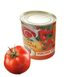Factory Price Provided by Canned Tomato Paste Factory in China