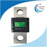 Mini Electronic Weighing Hanging Scale