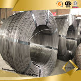 5.5mm Steel Wire Rod in Coils