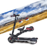 350W Two Wheels Foldable Adult Surfing Kick Electric Standing Scooter